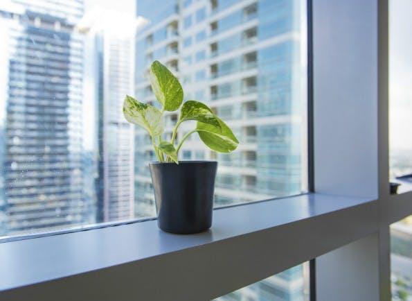 Die Luftqualität im Büro hat erheblichen Einfluss auf die Produktivität der Mitarbeiter. Zudem kann schlechte Luft zu erhöhten Krankheitsfällen sorgen.  (Foto: Shutterstock)