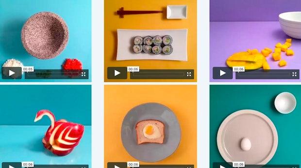 Vine als Marketingkanal: Diese Fotografin zeigt, dass 6 Sekunden reichen