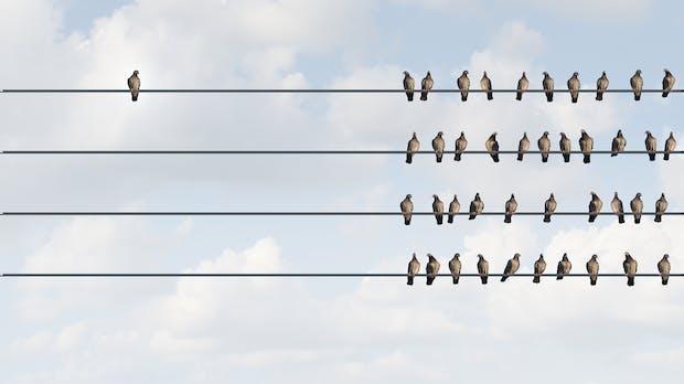 Disruption in jedem Bereich: Wenn Entwickler überflüssig werden [Kolumne]