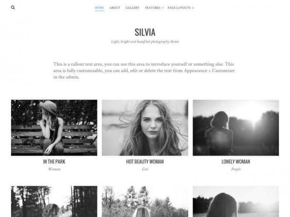 Ebenfalls ein interessantes Theme für Fotografen. (Screenshot: WordPress.org)