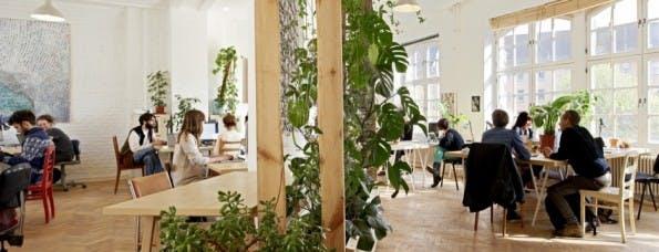 """Das """"Agora Collective"""" führt das Ranking der beliebtesten Coworking-Spaces in Deutschland an. Einen Tagespass gibt es hier ab 16 Euro. (Foto: Agora Collective)"""