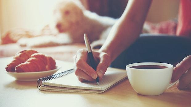 """13 kostenlose Handschriften-Fonts: Von """"Whatever it Takes"""" bis """"Gunny Rewritten"""" [Bildergalerie]"""