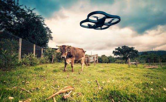 Abwehrsystem: Wie Airbus Drohnen künftig aus verbotenen Zonen verbannen will