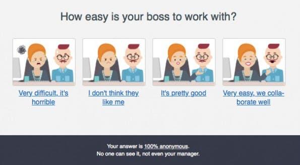 Mitarbeiter-Feeback per OfficeVibe: Beispiel für eine vorgefertigte Antwort. (Screenshot: t3n.de)