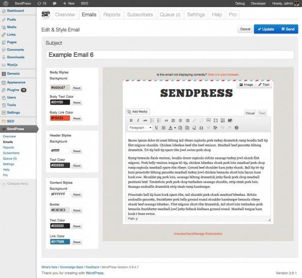 Die Ansicht eines Newsletters im Backend mit dem SendPress-Plugin. (Screenshot: WordPress.org)