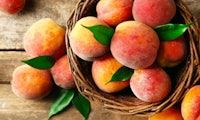 Schon angebissen? Peach, die neue Messaging-App von Vine-Gründer Dom Hofmann, geht steil