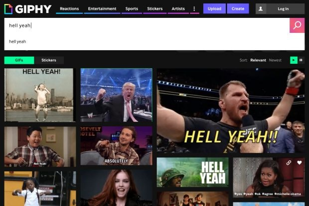 GIF-Suchmaschine: Giphy ist der wohl bekannteste GIF-Katalog im Web. (Screenshot: Giphy)