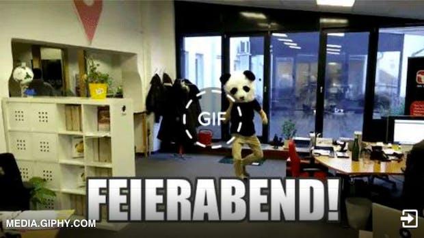 GIF-Suchmaschinen: Hier findet ihr Animationen für jeden Anlass