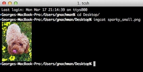 Terminal-Emulator für OS X: Die Beta von iTerm2 Version 3 steht zum Download bereit. (Screenshot: iTerm2)