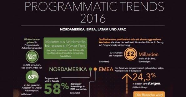 Programmatic Advertising-Trends 2016. (Grafik: Frische Fische; MediaMath)