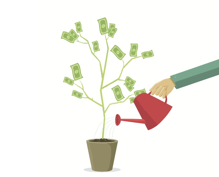 Das Gärtner-Prinzip: Wie plane ich ein Großprojekt? [Kolumne]