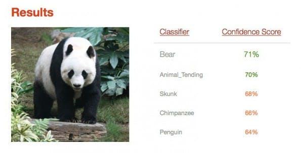 IBM Watson: Großer Panda als Bär erkannt. (Screenshot: Visual Recognition/t3n.de)