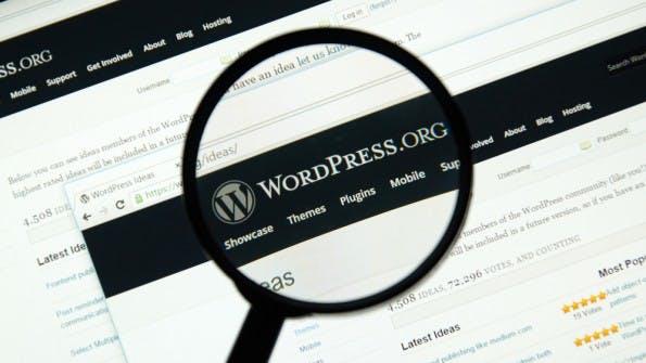 Wieder erweisen sich Plugins als Quelle für gefährliche Sicherheitslücken. (Foto: Dennizn / Shutterstock.com)