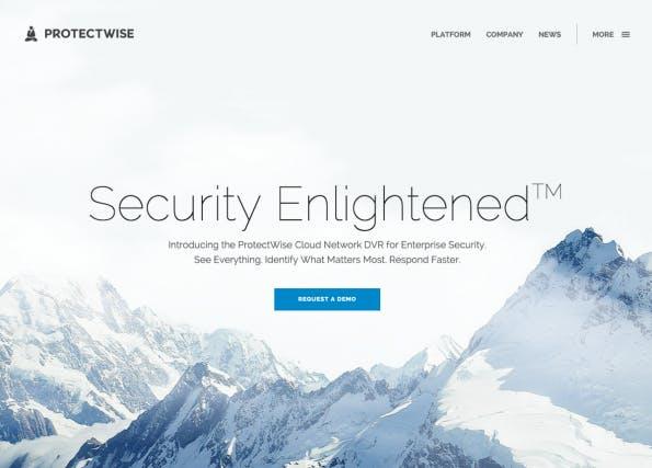Dunkler Text sollte nur verwendet werden, wenn das Hero-Image genug weiße Fläche bietet. (Screenshot: protectwise.com)