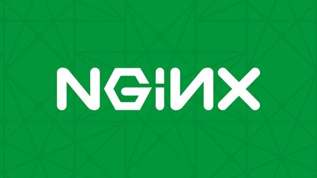 Nginx bekommt 43 Millionen US-Dollar von Goldman Sachs