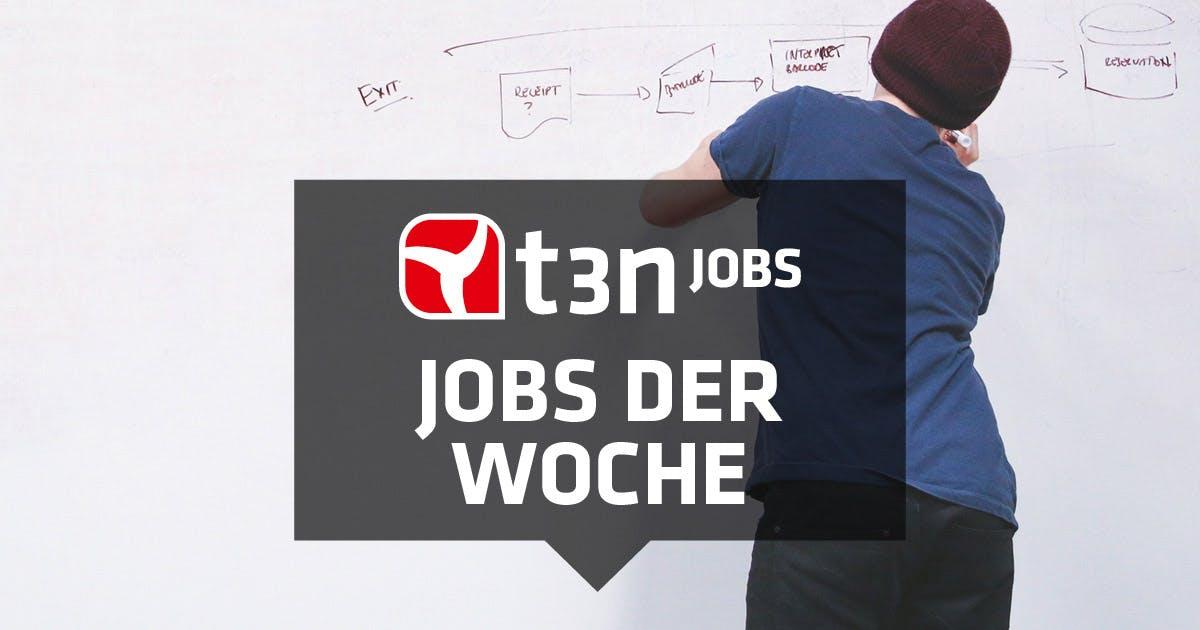 26 neue Jobs: Cornelsen, Lidl, Hipp und viele mehr suchen Verstärkung
