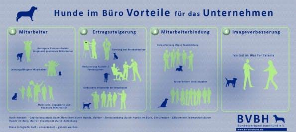 Ein Bürohund kann Mitarbeitern und Unternehmen Vorteile bringen. (Infografik: Bundesverband Bürohund)
