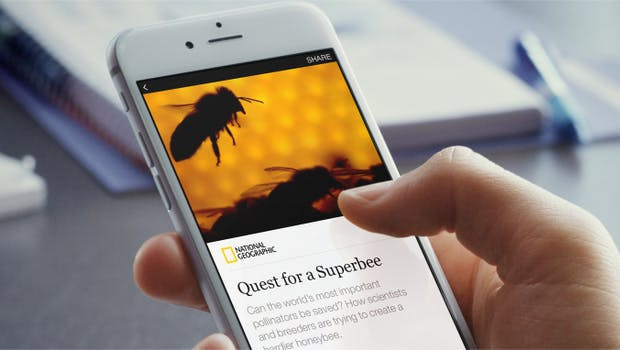 Facebook: Publisher sollen für Instant-Articles bald Geld verlangen können. (Foto: Facebook)