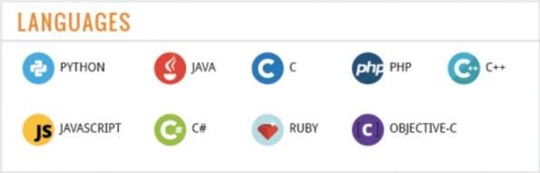 Welche Programmiersprache du zuerst lernen solltest. (Infografik: Carlcheo.com)