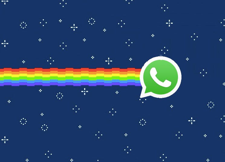 Whatsapp plant GIF-Support – na endlich!