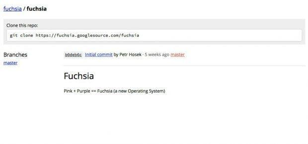 Fuchsia: Neues Google-Betriebssystem ist Open Source, aber Linux-frei. (Screenshot: Google)