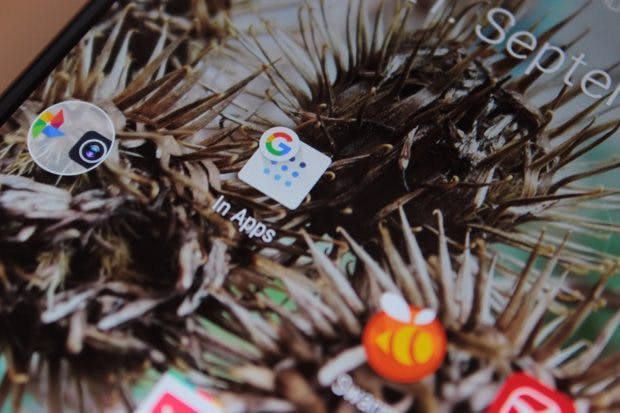 Umständlich: Mit der neuen Funktion inklusive Homescreen-Icon könnt ihr lokale Inhalte durchsuchen. (Foto: t3n)