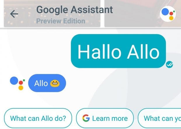 "Der Google Assistant sagt in Allo brav ""Hallo"". (Screenshot: t3n)"