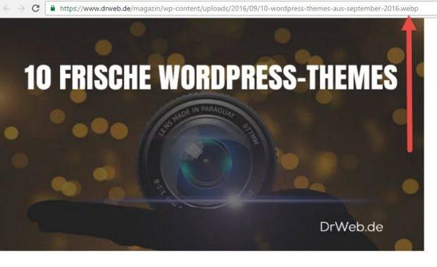 Chrome-Nutzer bekommen automatisch WebP geliefert. (Screenshot: t3n)