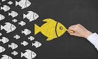 Digital Leadership: Was Manager in der digitalen Arbeitswelt beachten müssen