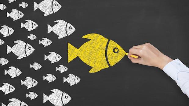 Influencer Marketing: So streng definieren die Gerichte Schleichwerbung
