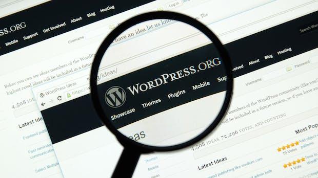 WordPress-Update: Sicherheitslücke gefährdete 27 Prozent aller Websites