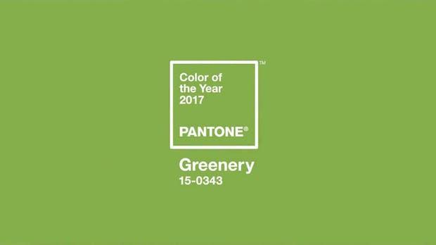 Pantone 15-0343, die ultimative Trendfarbe im nächsten Jahr