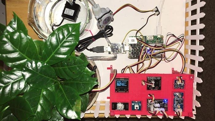 Nie wieder die Büropflanzen vergessen: Dank Raspberry Pi zum grünen Daumen