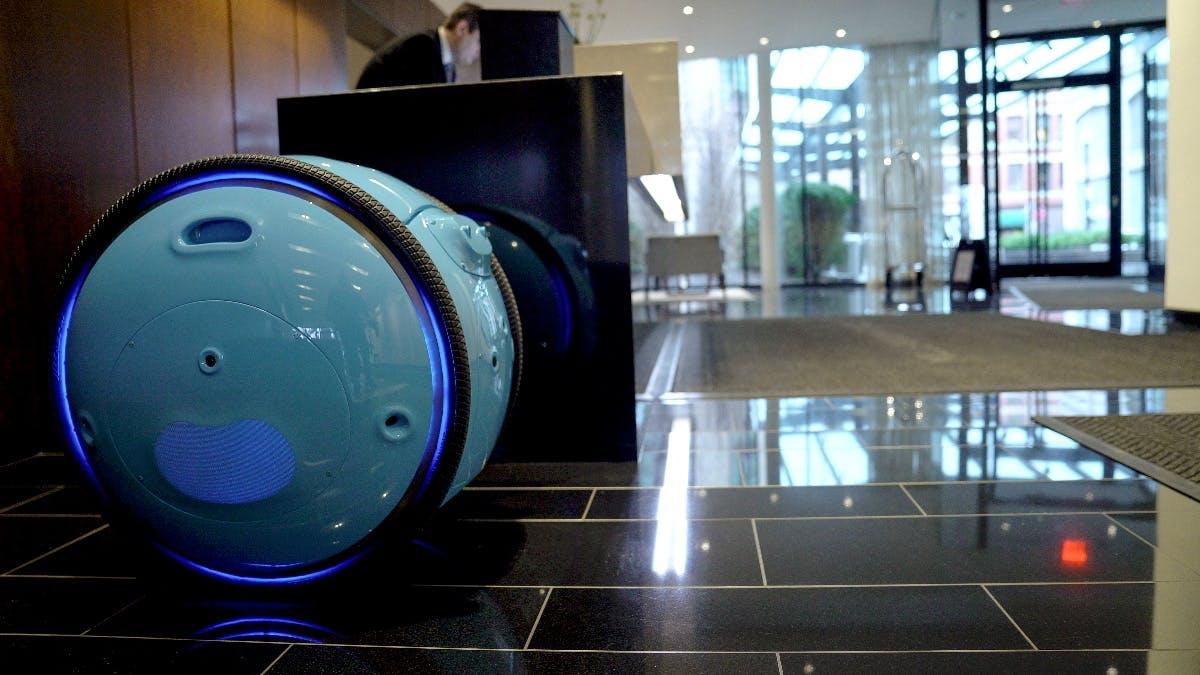 Gita-Roboter. (Bild: Piaggio Fast Forward)