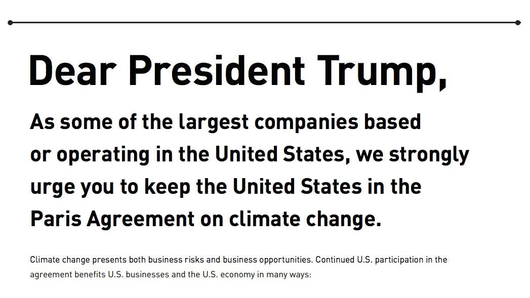 Von Apple bis SpaceX: Tech-CEOs kritisieren Trumps geplanten Ausstieg aus Klimaabkommen