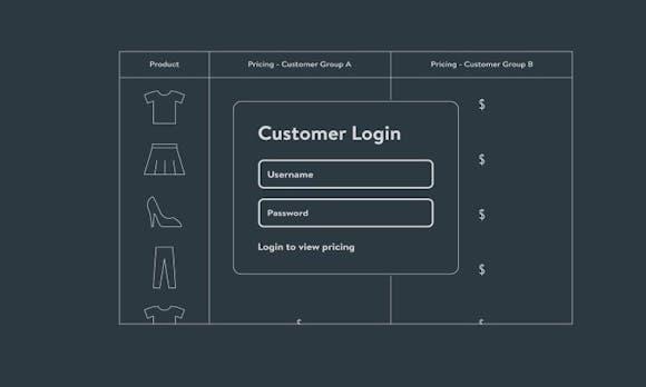 Shopwares großer Wurf: Individuelle Entwicklungen mit einem B2B-Framework