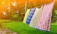 Skurriles Berliner Bio-Startup trocknet deine Wäsche an frischer Landluft