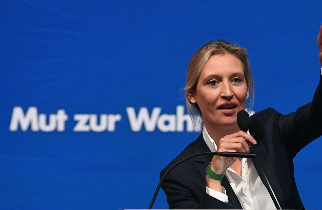 AfD, Grüne, CSU: So schmutzig geht es im digitalen Wahlkampf wirklich zu