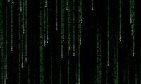 Aufgedeckt: Der grüne Matrix-Code besteht aus Sushi-Rezepten