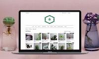 Wie eine Gründerin mit VersaCommerce den Pflanzenmarkt digitalisiert