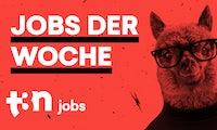 Unsere Jobs der Woche für digitale Pioniere