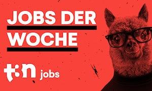 Innogy, S-Oliver, Telekom, R+V, ING und mehr: 19 neue Stellen für Webworker
