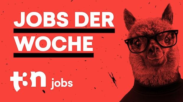 t3n Jobs: 14 freie Plätze bei R+V, ING, Jack Wolfskin, Lidl und mehr