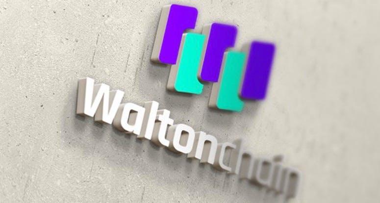 Waltonchain: Wie ein Tweet die Kryptowährung zum Absturz brachte