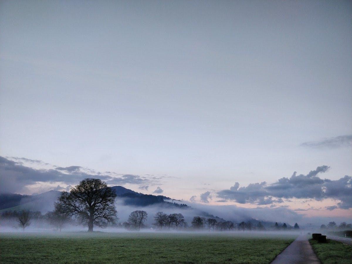 Ein Märchenmorgen bei Freiburg. (Foto: Twitter-Nutzerin @HulaLena)