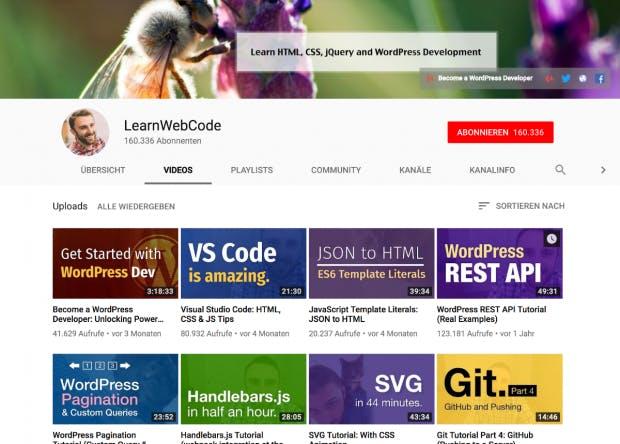 Learn-Web-Code wird vom Webentwickler Brad Schiff betrieben. (Screenshot: t3n.de)