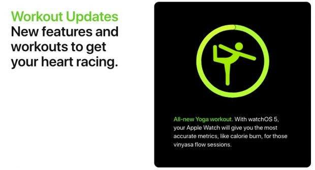 watchOS 5 bringt Unterstützung für weitere Aktivitäten. (Screenshot: Apple)