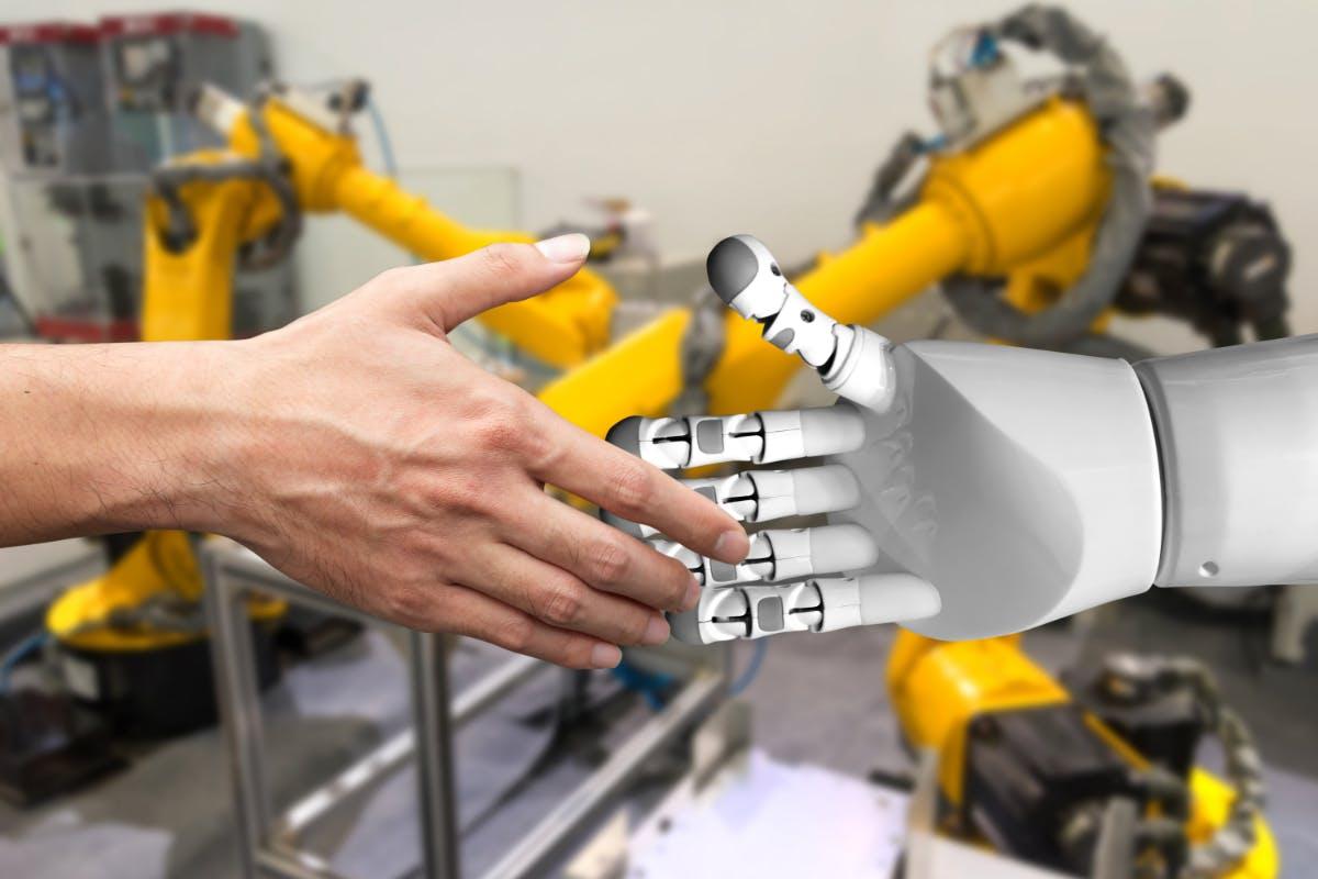 Wie wir uns besser auf bevorstehende KI-Arbeitsplätze vorbereiten können