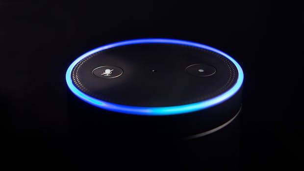"""Wenn man nachts mal raus muss, will man oft kein Licht machen. Mit dem Kommando """"Alexa, starte Nachtlicht"""" oder """"Alexa, starte Nachtlicht für eine Minute"""" (wählbar ist ein Zeitraum von bis zu 90 Sekunden) lässt sich die Beleuchtung des Echo einschalten und geht danach automatisch wieder in den Stand-by-Modus. (Foto: amedley / Shutterstock.com)"""