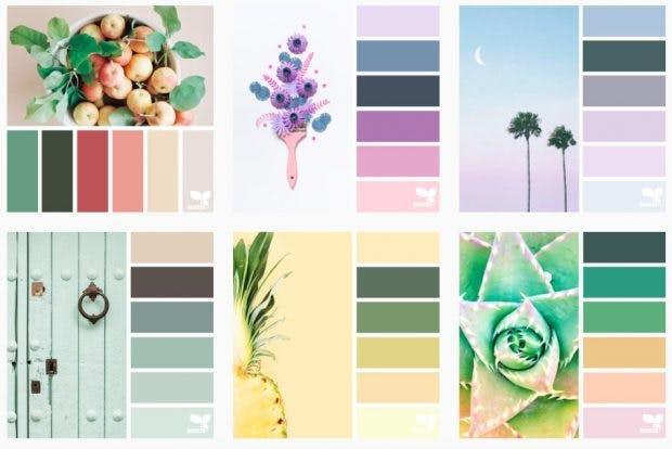 Design Seeds auf Instagram